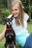 foto of miniature pinscher  - Proud little miniature pinscher dog sitting on the lawn with an alert look accompanied by its loving owner an attractive young teenage girl - JPG