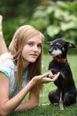 stock photo of miniature pinscher  - Loving little miniature pinscher dog sitting with its paw cupped in the hand of its owner an attractive young teenage girl - JPG