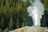 image of plateau  - Geyser in Yellowstone National Park Wyoming USA. Active Geyser. Nature Photo Collection.