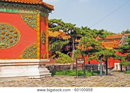 Ornamental Walls And Old Pines In The Forbidden City,  Beijing, China