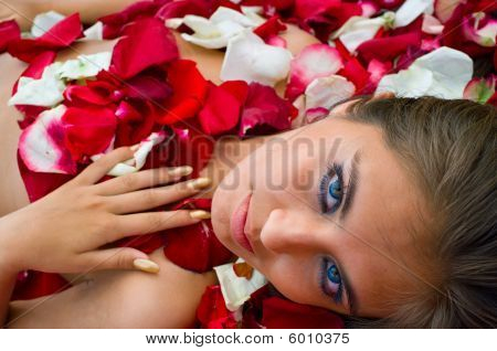 Young Girl In Rose Petal