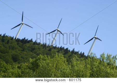 Three Wind Mills