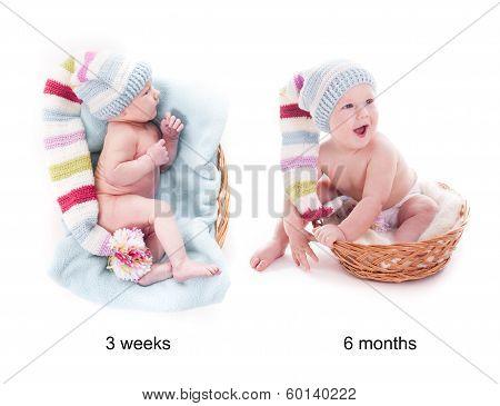 Baby's grow