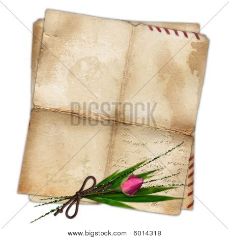 Old Paper With Rose And Bamboo Leaf