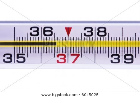 Thermometer For Measurement Of A Body Temperature 36-6