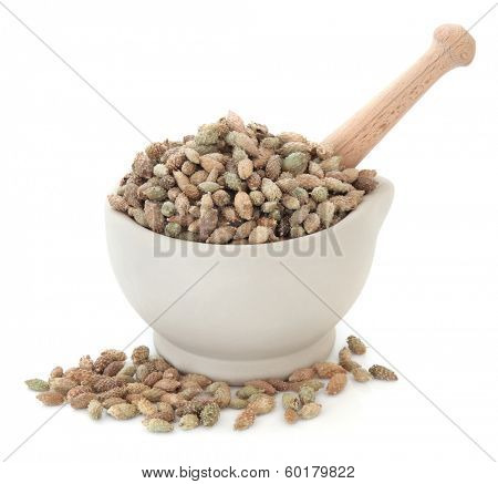 Cocklebur xanthium fruit chinese herbal medicine in a stone mortar with pestle over white background. Cang er zi.
