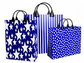 3D Festive Blue Shopping Bags