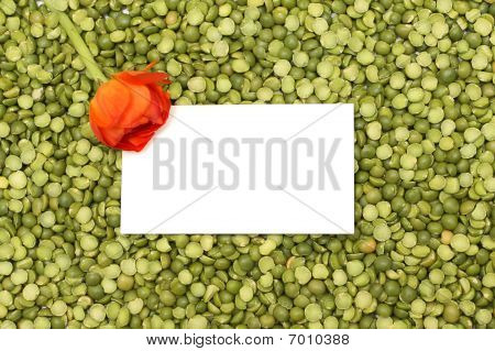 Bright Green Background Of Peas With Orange Flower And White Space For Text