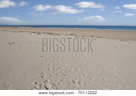 Beautiful Sandy Ballybunion Beach