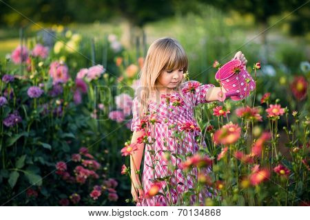 Small  girl  watering the flowers.