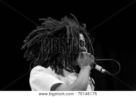 Rasta Hair Singer Performing Live On Stage