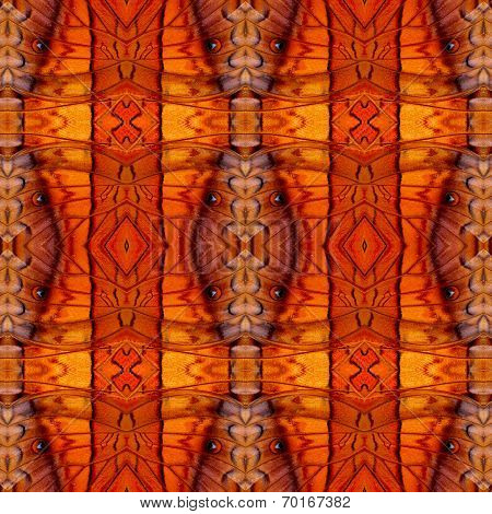 Seamless Background Pattern Made Of Common Commander Butterfly Wing Skin