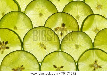Lime Lemon Slice