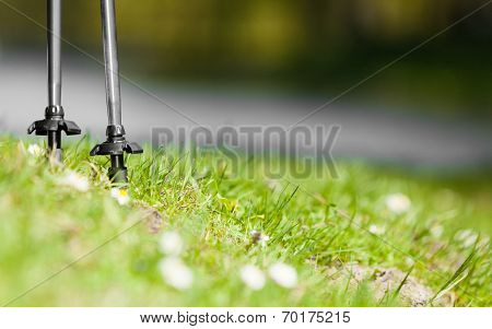 Nordic Walking. Gray Sticks On Grass In Park