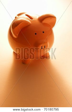 Backlit Pink Piggy Bank