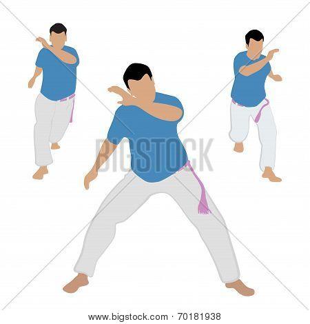 Capoeira  dancer vector illustration