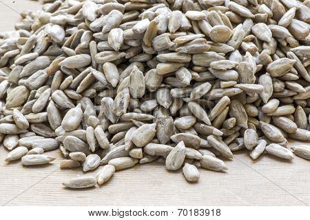 Heap of sunflower seed
