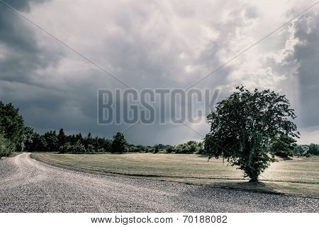 Road In A Cloudy Nature Scenery