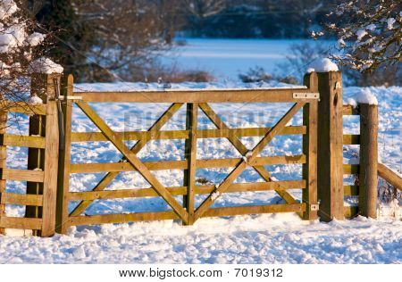 Gate through a snowy field in warm afternoon light
