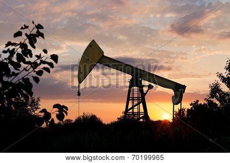 Pumpjack Pumps Oil At Summer Sunset