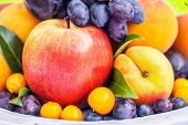 picture of grown up  -  Colorful collection of fruits - JPG