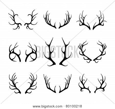 Vector deer antlers isolated on white