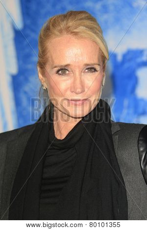 LOS ANGELES - NOV 19: Kim Richards at the premiere of Walt Disney Animation Studios' 'Frozen' at the El Capitan Theater on November 19, 2013 in Los Angeles, CA