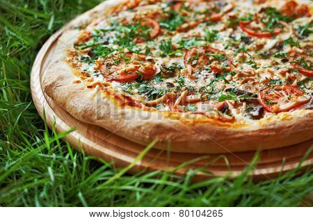 Pizza on green grass background