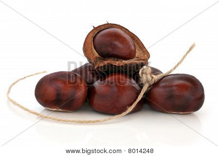 Conkers and String