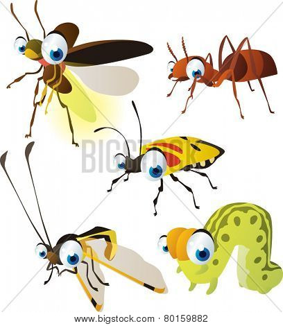 vector isolated cartoon cute animals set: firefly, owlfly, ant, caterpillar, beetle