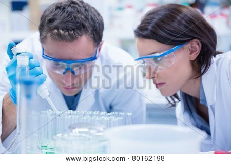 Chemist team working with pipette and test tube in the laboratory
