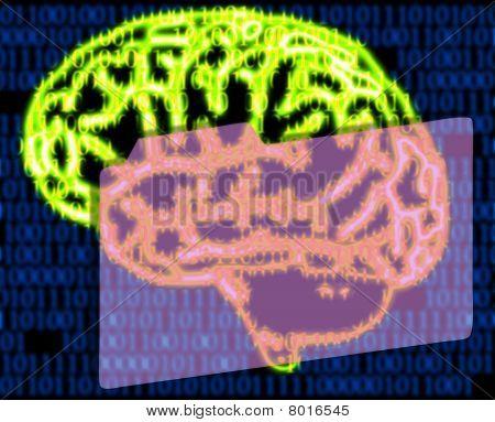 Humans Brain And Binary Code