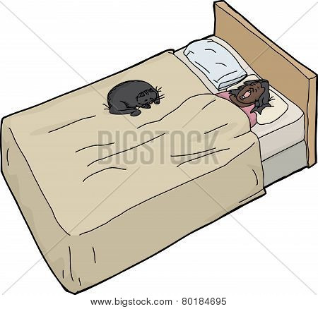 Black Cat With Snoring Woman