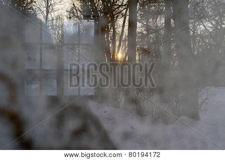 Winter Reflection In A Windowpane