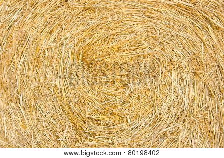 Bale Roll Straw Texture Background