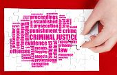 stock photo of criminology  - Word cloud for Criminal justice placed on white puzzle - JPG