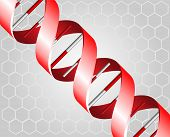 image of double helix  - Red DNA spirals on grey background illustration - JPG