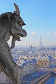 picture of gargoyles  - Aerial view of Paris City eiffel tower and Seine river shot on the top of Notre Dame Cathedral - JPG