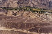 pic of geoglyph  - Desert View Nazca bird - JPG