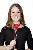 cute girl with a red rose poster