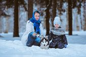 stock photo of husky sled dog breeds  - little girl and her mom with husky dog in winter park - JPG