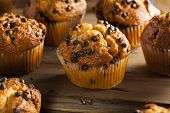 stock photo of chocolate muffin  - Homemade Chocolate Chip Muffins Ready for Breakfast - JPG