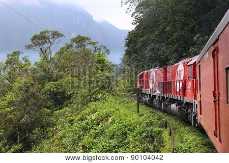 Brazil Jungle Train