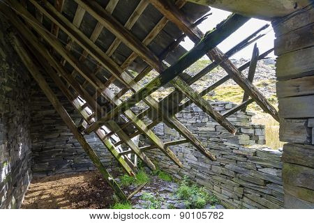 Ruin Of Stone Cottage From Within, United Kingdom