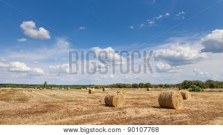 Beautiful Countryside Landscape