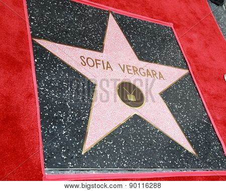 LOS ANGELES - MAY 7:  Sofia Vergara's Star at the Sofia Vergara Hollywood Walk of Fame Ceremony at the Hollywood Blvd on May 7, 2015 in Los Angeles, CA