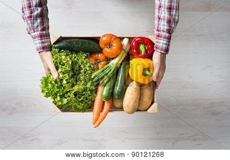 Farmer's Harvest