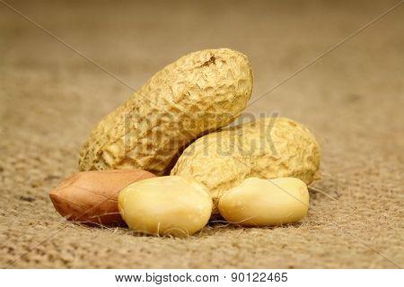 Peeled Peanuts
