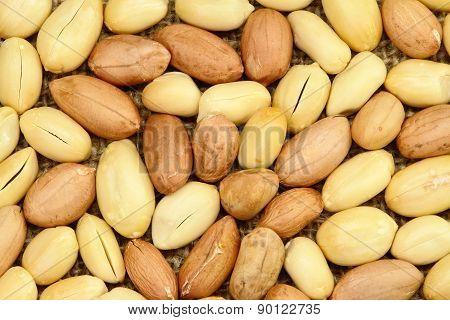 Peanut Texture