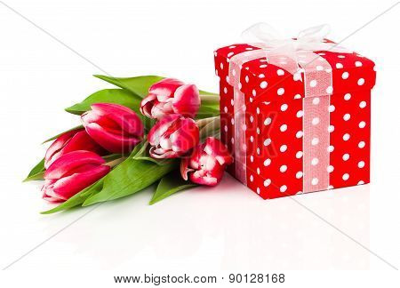 Beautiful Tulips With Red Polka-dot Gift Box. Happy Mothers Day